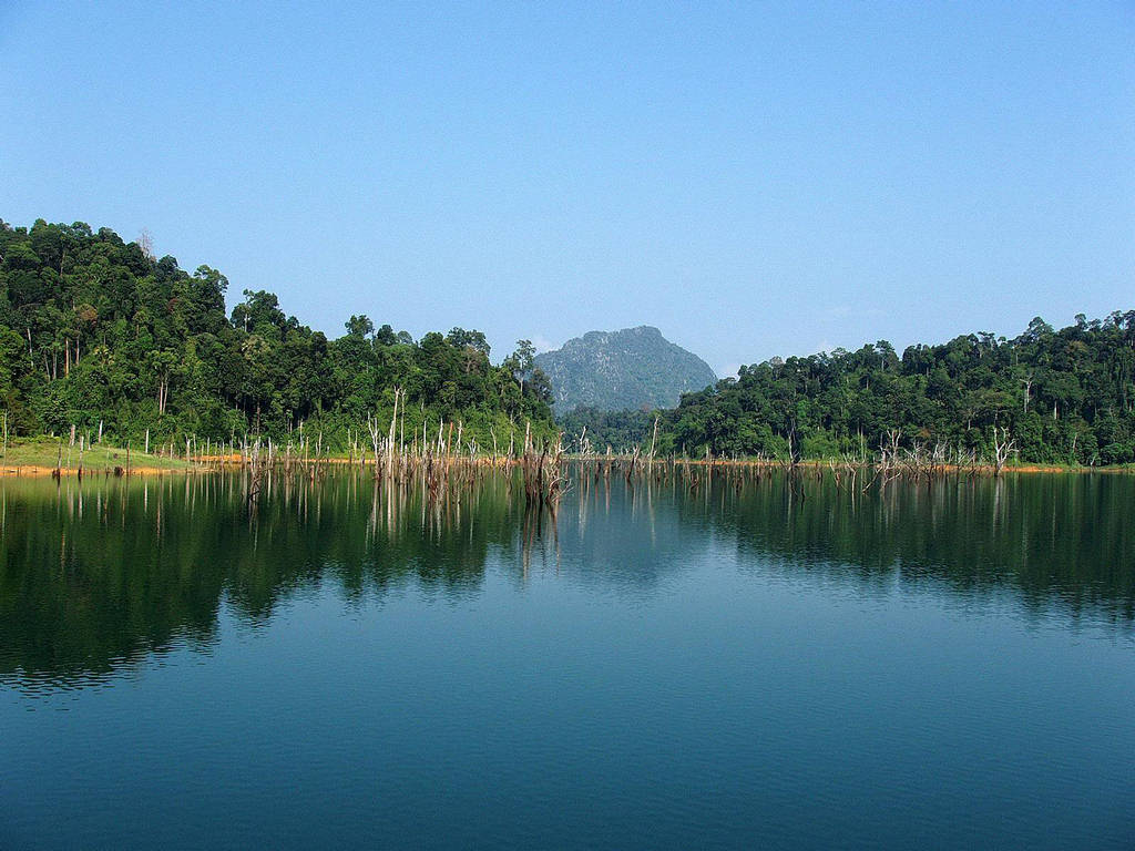 Inspirational Quotes For Computer Wallpapers Kenyir Lake Malaysia Name Of Beauty Xcitefun Net