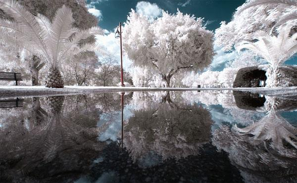Cute Science Wallpaper Infrared Photography Of Nature Xcitefun Net