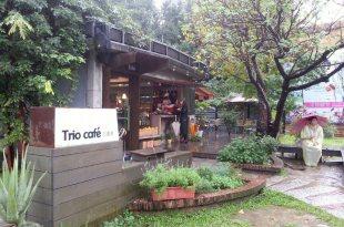 台北華山藝文園區|Trio Cafe 三重奏|晴雨午後&深夜私語,都能在這裡找到相配的酒與食。