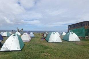 復活節島住宿推薦|Camping Mihinoa,看著太平洋與摩艾發呆,好睡帳棚與雙人房!