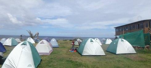 復活節島住宿推薦 Camping Mihinoa,看著太平洋與摩艾發呆,好睡帳棚與雙人房!