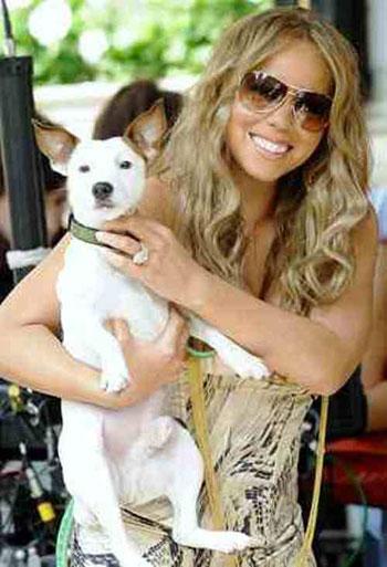 إيمى سمير غانم مع كلبها اللولو المفضل -اليوم السابع -9 -2015