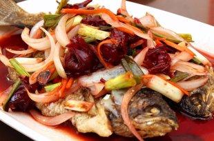 「7道神好吃的苗栗客家料理」鱒魚大餐保證讓海鮮控們超級滿意!