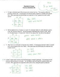 Holt biology worksheets chapter 13 evolution