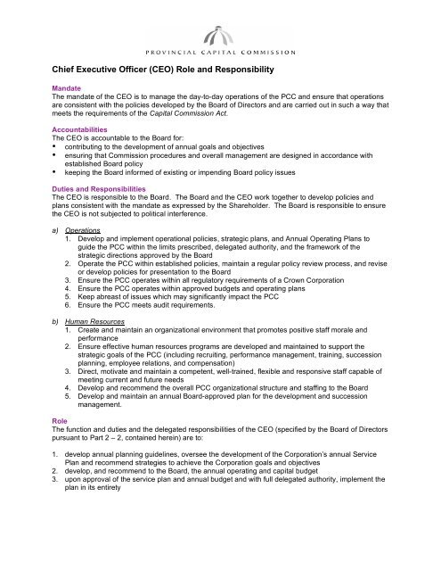 Chief Executive Officer (CEO) Role and Responsibility - Provincial