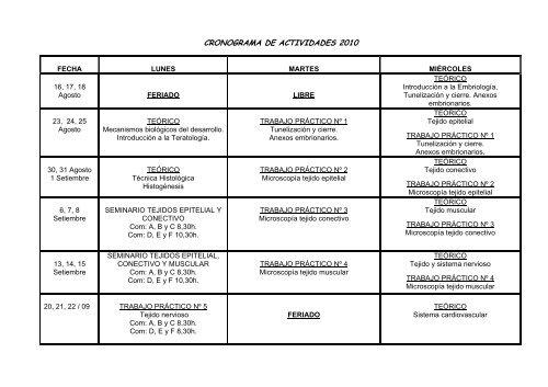 CRONOGRAMA DE ACTIVIDADES 2010pdf