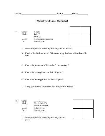 Printables. Monohybrid Cross Worksheet. Mywcct Thousands