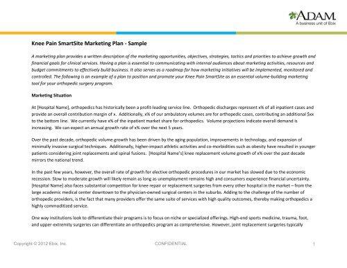 Knee Pain SmartSite Marketing Plan - Sample - Adam