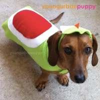Yoshi from Nintendo Dog Costume