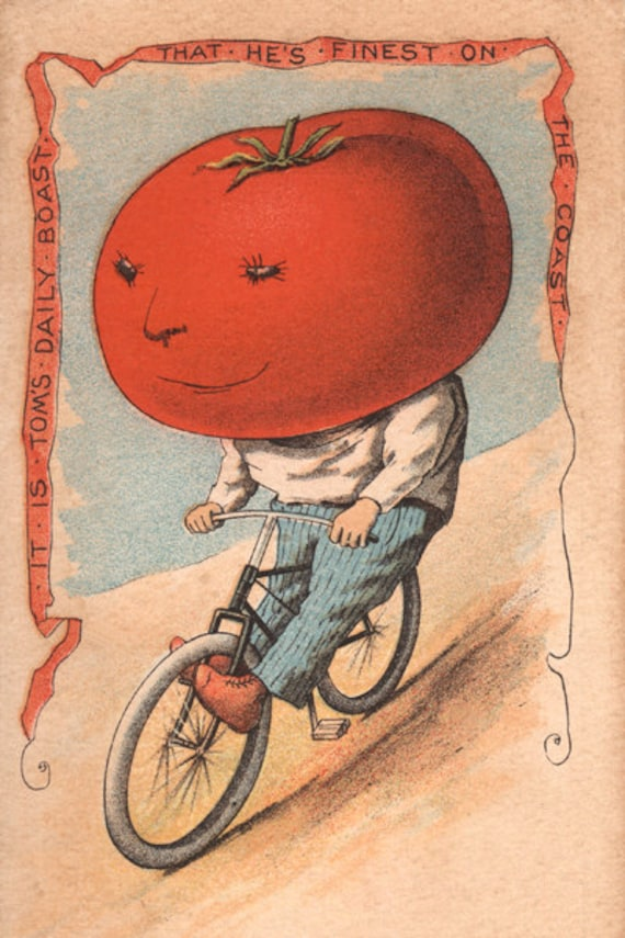 Bicycle Shops In The Vegetable People Tomato Riding A Bicycle 8 X 12 Print