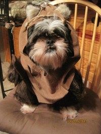 Ewok Hood/Fur Dog Halloween Costume Size Small