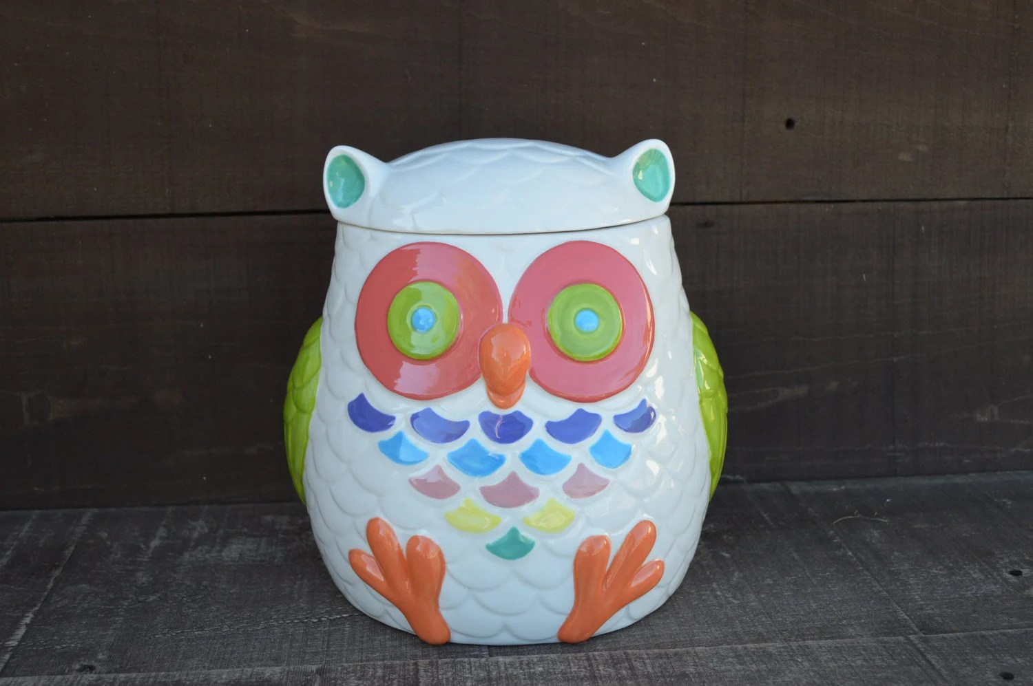 Modern Cookie Jar Whooo Loves Owls Large Modern Ceramic Owl Cookie Jar By