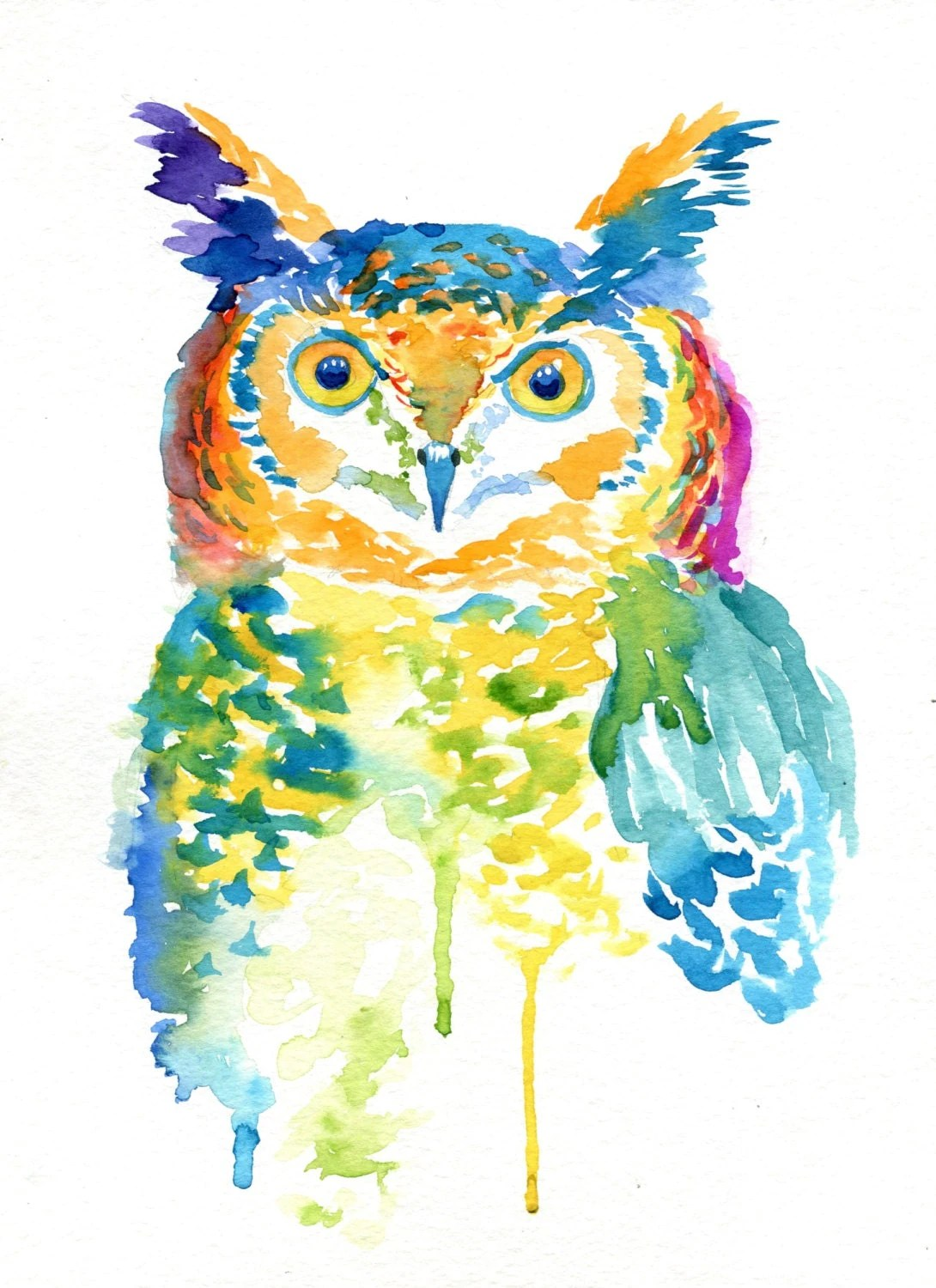 Colorful Pictures Of Owls Colorful Owl Paintings