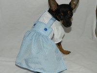 Dorothy Wizard of Oz dog costume XXS