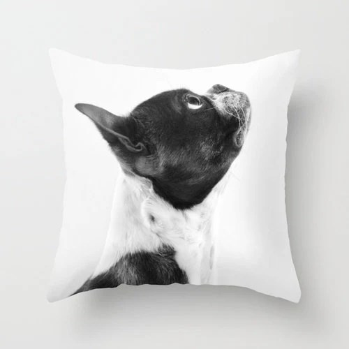 Dog Pillow Boston Terrier Pillow 16 x 16 Pillow Cover Black and White