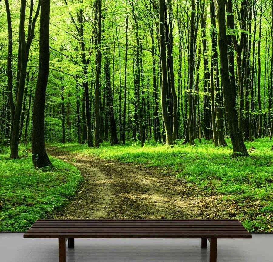 Wallpaper Dinding Pemandangan 3d Items Similar To Walk In The Forest Wallpaper