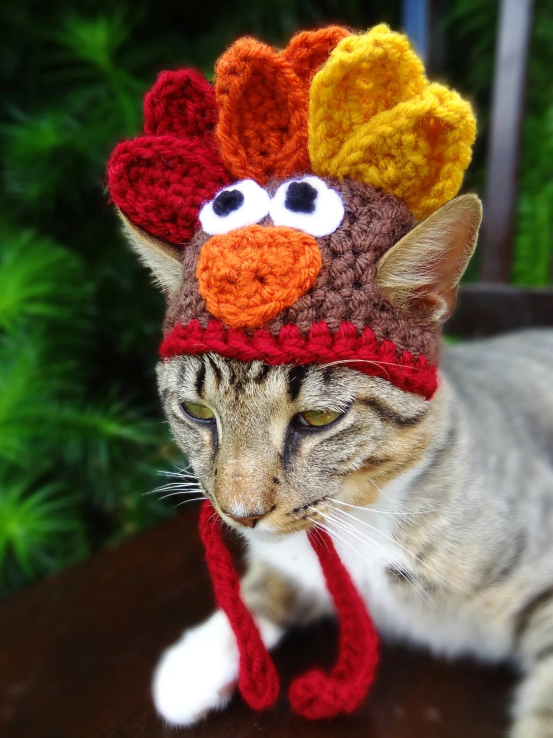 Girl In Hat Wallpaper Cat Hat Costume The Thanksgiving Turkey Hat By