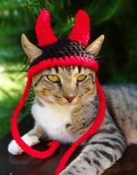 Cat Hat Costume Small Dog Hat Costume The Little Devil Hat