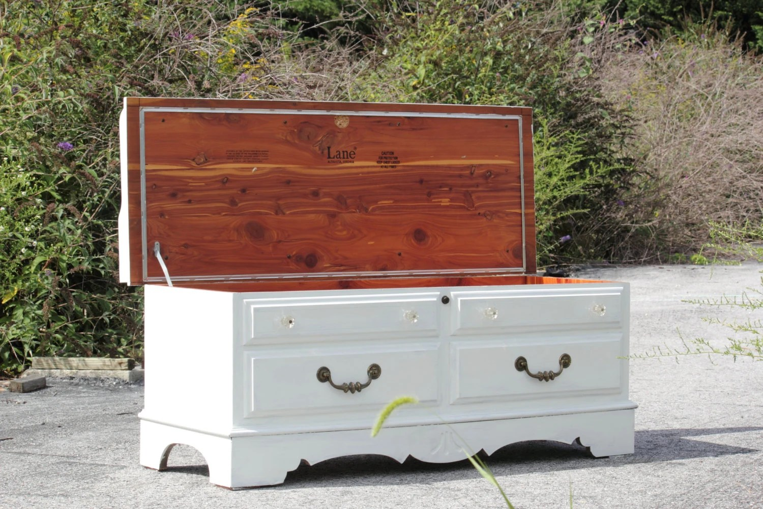 Reserved White Lane Cedar Chest With Custom Cushion Top Hope