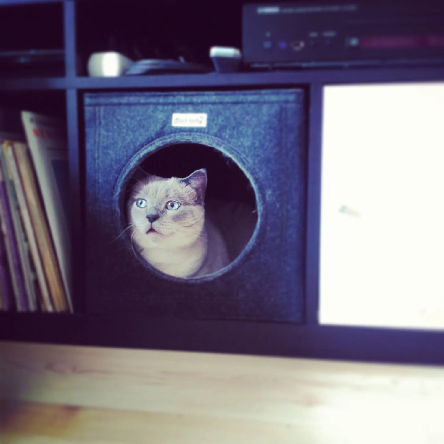 Ikea Chat Felt Cat Cave Fits Into Ikea Expedit And Kallax Felt Cat Bed