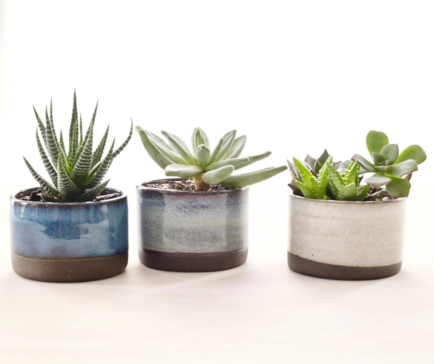 Ceramic Pottery For Plants Set Of Three Ceramic Planters For Succulents