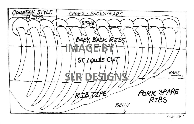 pig rib diagram