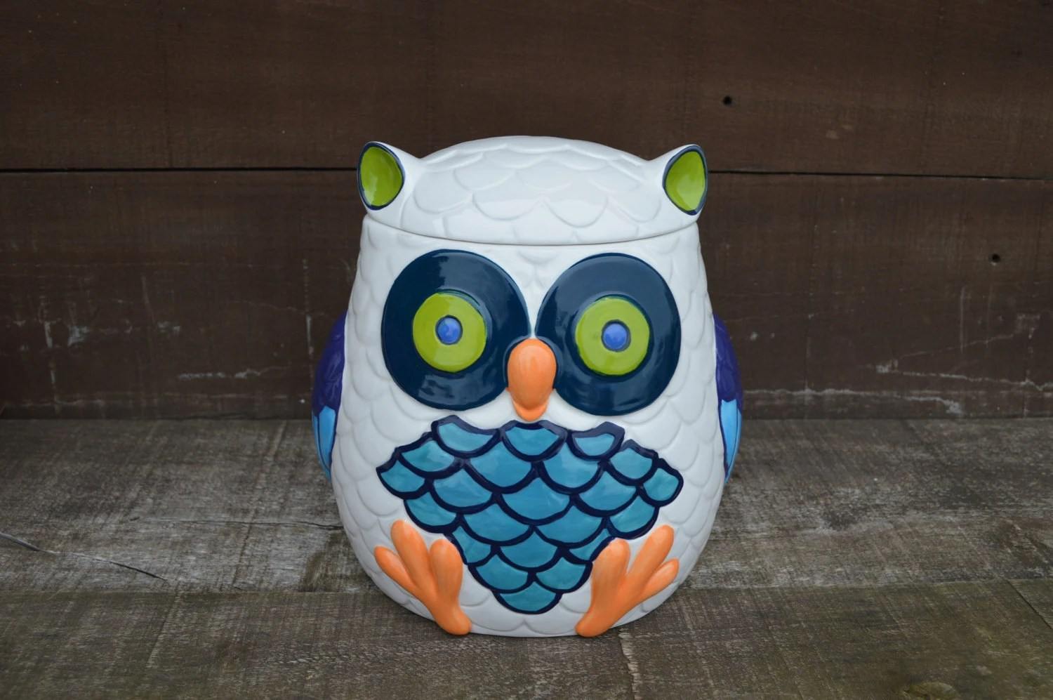 Modern Cookie Jar Whooo Loves Owls Large Modern Ceramic Owl Cookie Jar