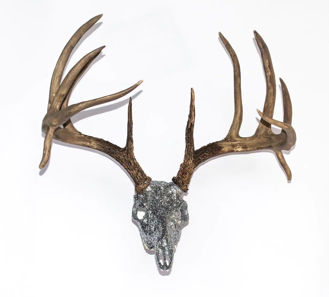 Fake Deer Skull And Antlers Replica Whitetail Deer Skull W Antlers 23 Wide