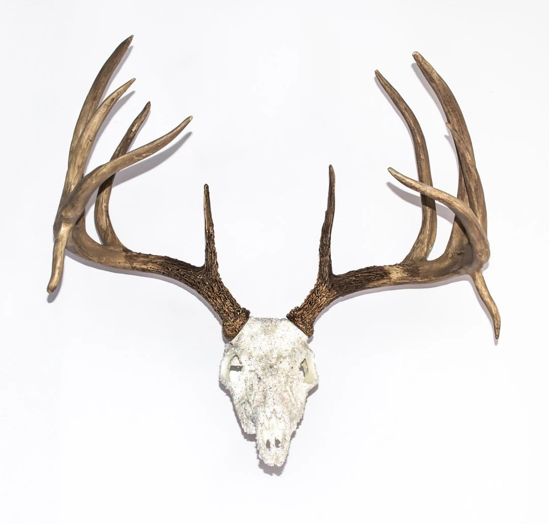 Fake Deer Skull And Antlers Replica Whitetail Deer Skull W Antlers 23 Wide Over