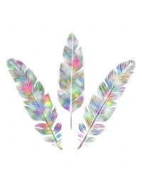 Rainbow Feather Print Feather Wall Art Feather by JDPPrints