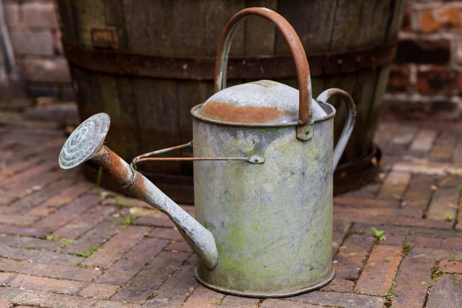 Galvanized Watering Cans Vintage Watering Can Rustic Galvanized Rose Spray Vintage