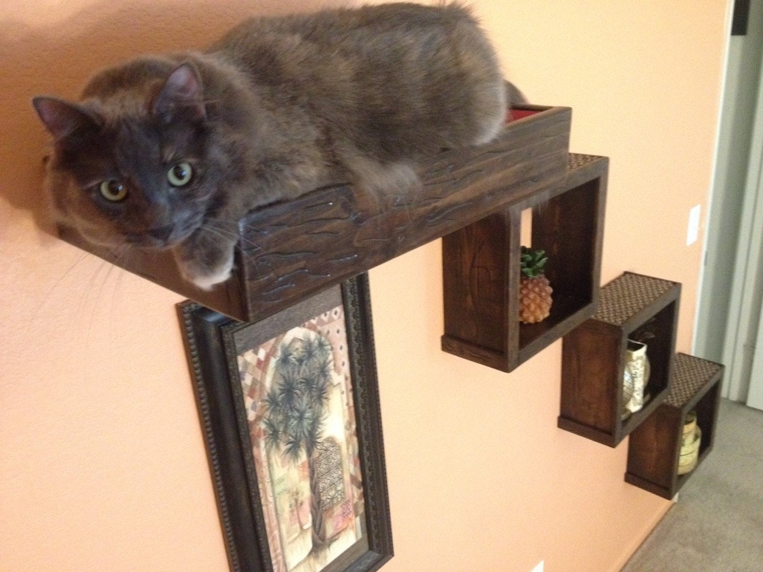 Set Of Four Three Floating Cat Cube Shelves And One Floating