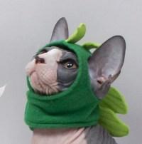 Pet Costume Godzilla Dinosaur Halloween Cat Clothes. Pet Hat