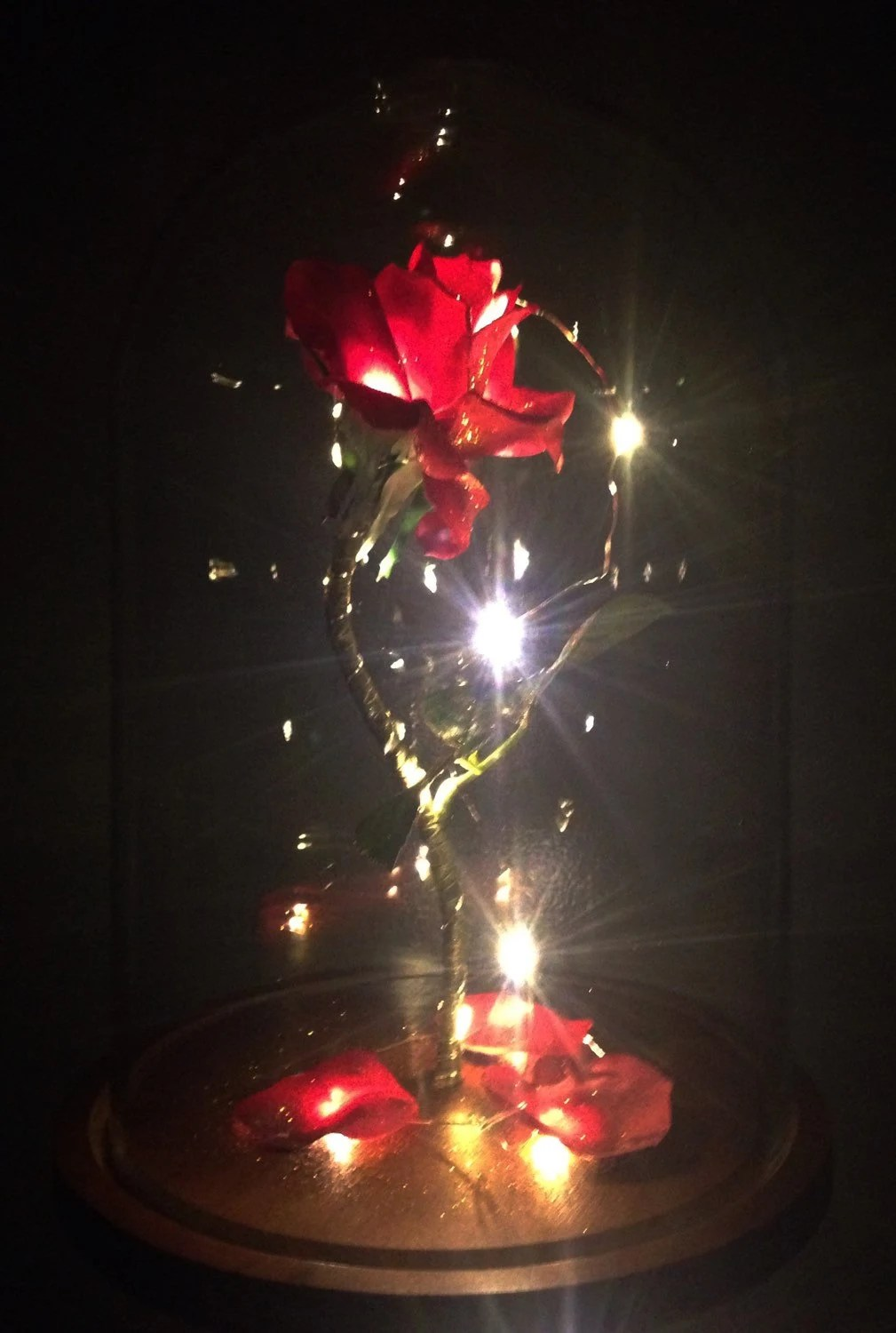 Glass Dome With Base Life-sized Enchanted Magical Rose From By Magicprincesswhitney