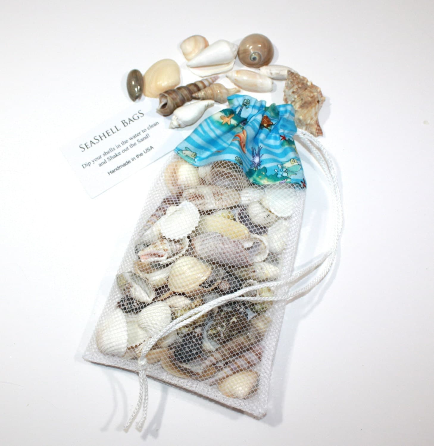 sea shell collecting tools