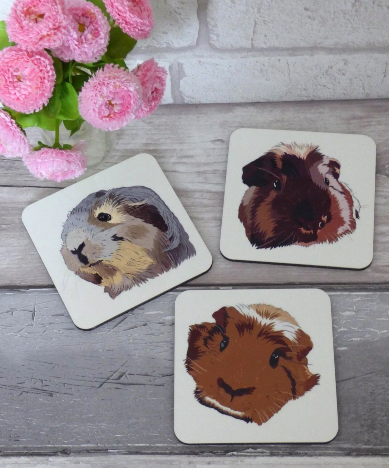 Pig Coasters Guinea Pig Coasters Set Of 3 Guinea Gp Small Pet Gift For