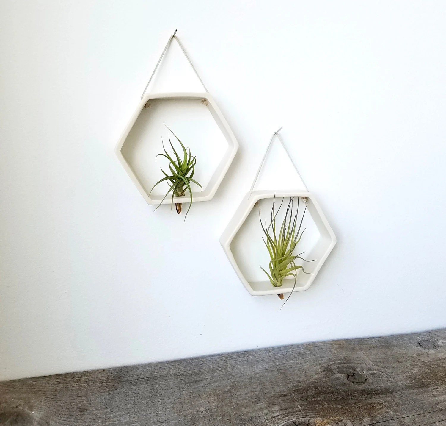 Air Plant Wall Holder Porcelain Honeycomb Air Plant Holder Geometric Wall Hanging Planter