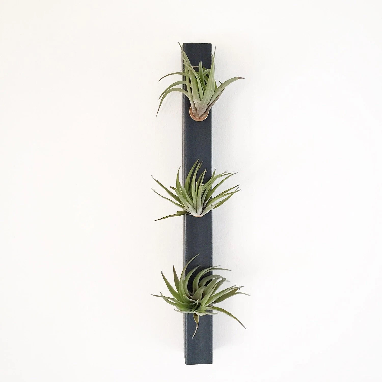 Indoor Wall Mounted Plant Holders White Planter Air Planters Vertical Planter Minimalist