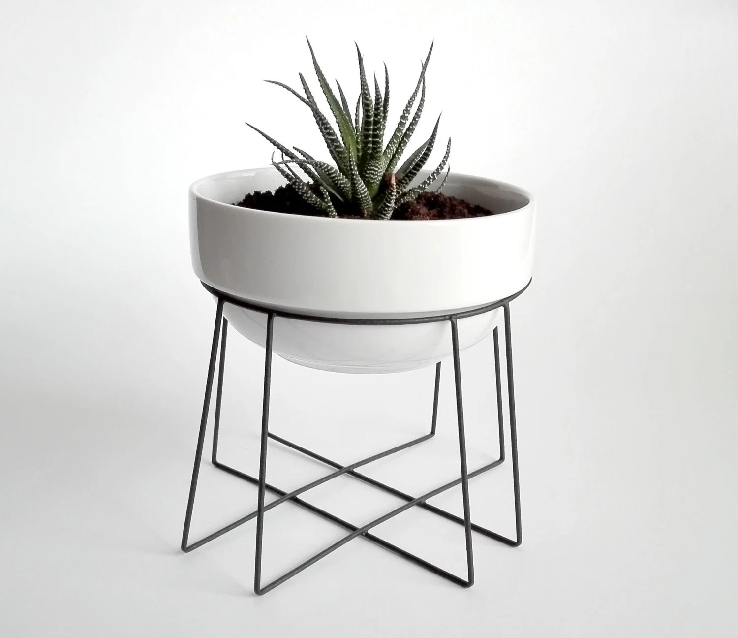Plants Holders Metal Geometric Plant Stand Spider With A Ceramic White