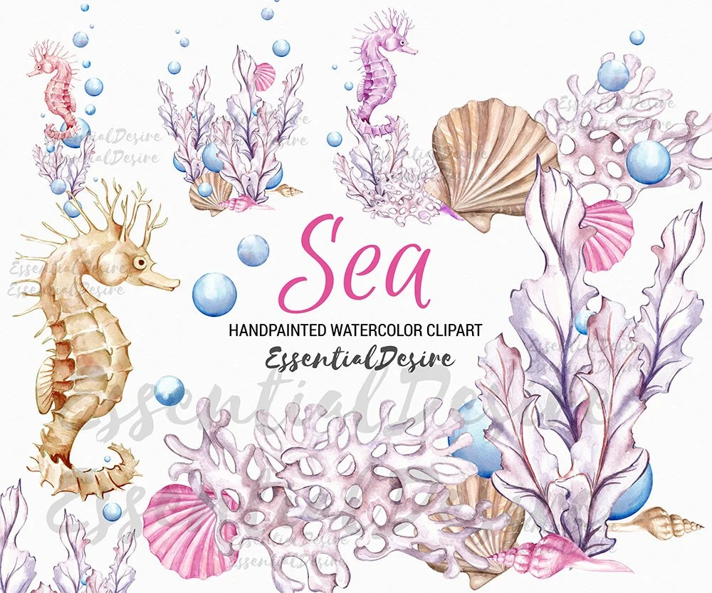 Baby Girl Nursery Wallpaper Borders Ocean Watercolor Clipart Seahorse Pink Purple Sea