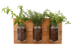 Small Of Wall Mounted Indoor Herb Garden