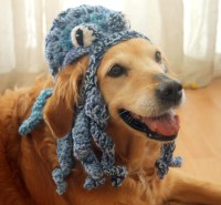 Funny Dog Hat Octopus Hat for Dogs Funny Pet Accessories