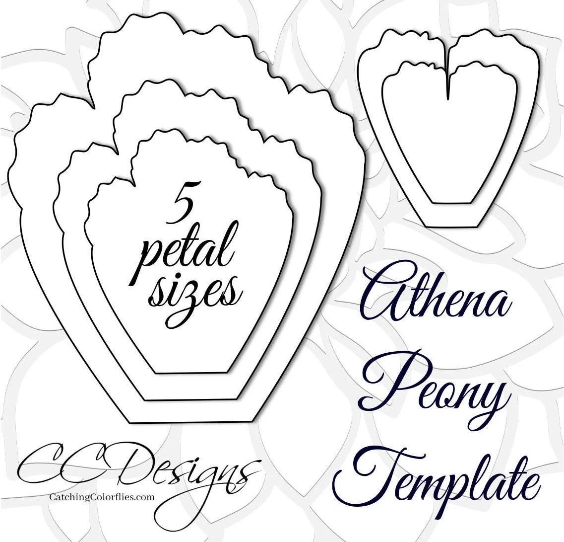 Giant Paper Peonies, Printable PDF Flower Templates, Peony PDF - flower template