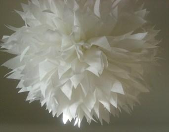 White... 1 pom