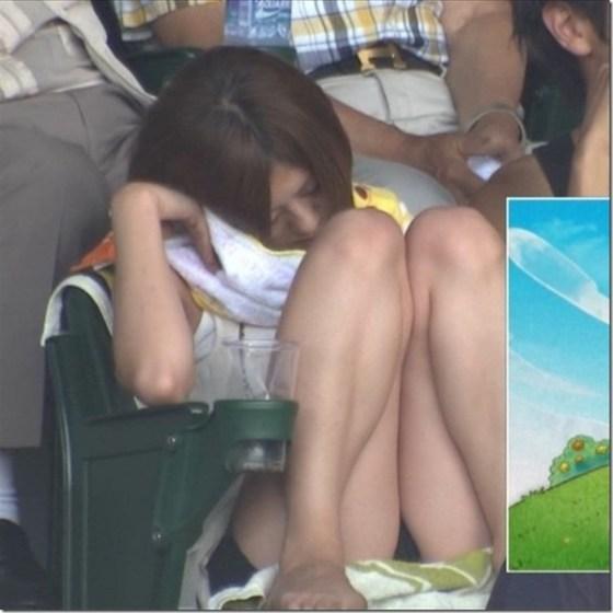 【放送事故画像】甲子園始まったし応援席のハプニング画像うPするわ! 05