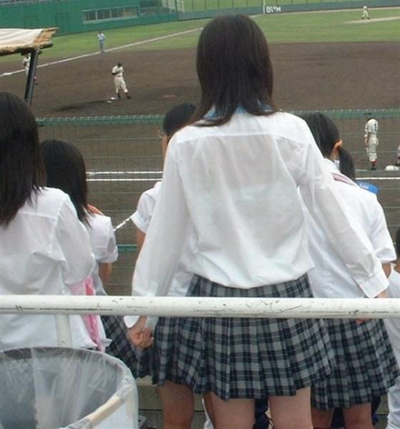 【放送事故画像】甲子園始まったし応援席のハプニング画像うPするわ! 08