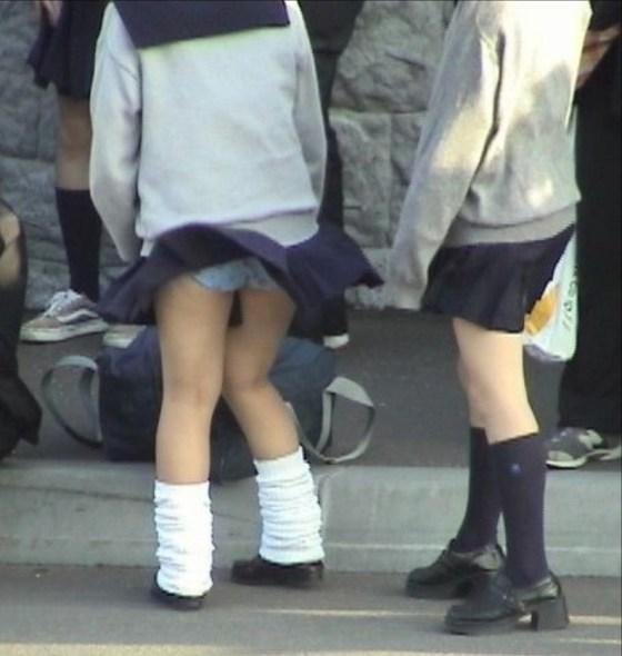 【パンチラハプニング画像】JKのスカートが風でめくれあがって大変な事になってるぞww 22
