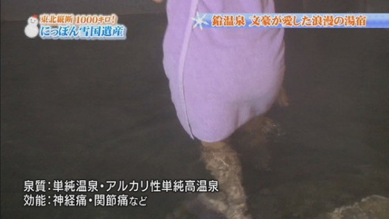 【放送事故画像】濡れた体と一枚のバスタオルがエロく見える、温泉美人たちww 09