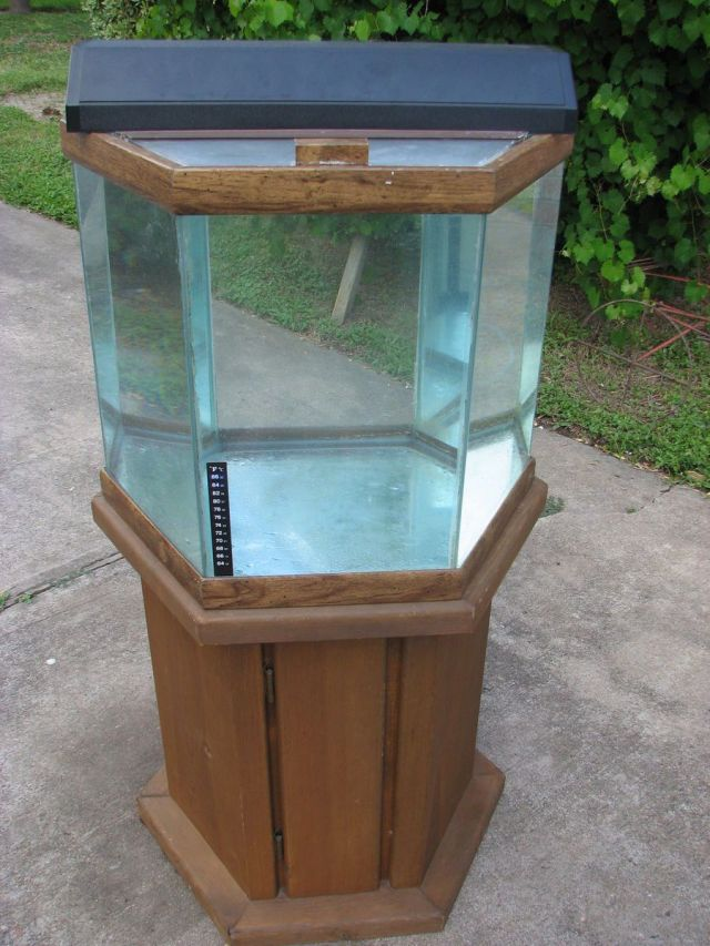 30 gallon fish tank hexagon 30 gallon hexagon fish tank for Oceanic fish tanks