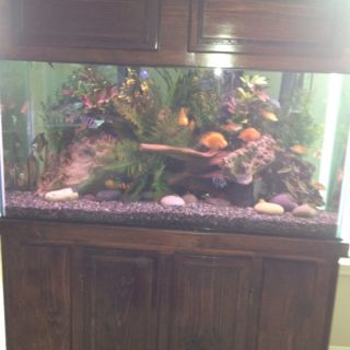 gallon fish tank canopy 75 gallon fish tank canopy 75 gallon fish tank